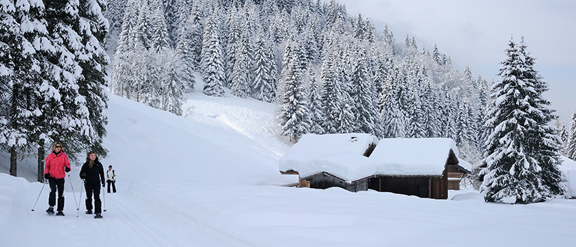 france_portes-du-soleil_morzine_snow-shoeing.jpg